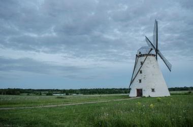 Estonie Tallinn moulin