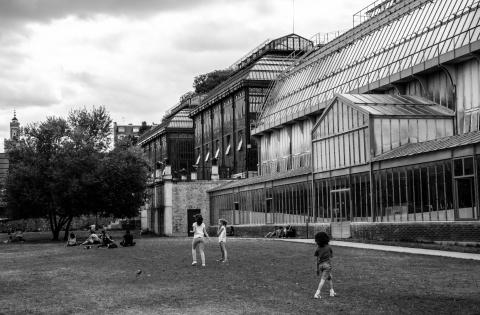 Paris- Jardin des plantes