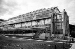Paris 5° Jardin des plantes