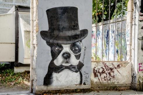 20170930 bordeaux Darwin 53