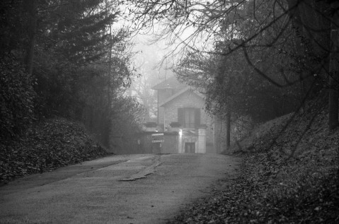 20161219 forêt maison sous la brume nb