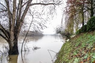 20171217 bords de Marne pieds dans leau5
