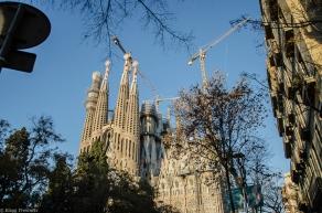 20171226 Barcelone Sagrada Familia 2